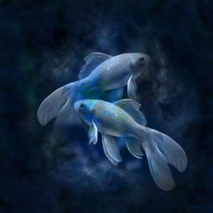 žuvys, horoskopas