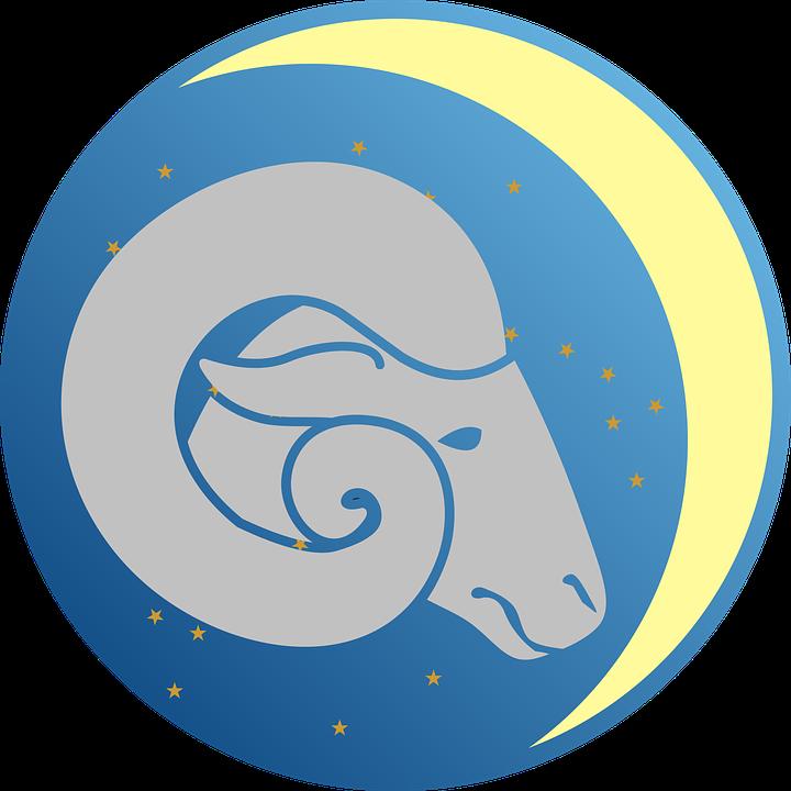 avinas, horoskopas 2020 metams