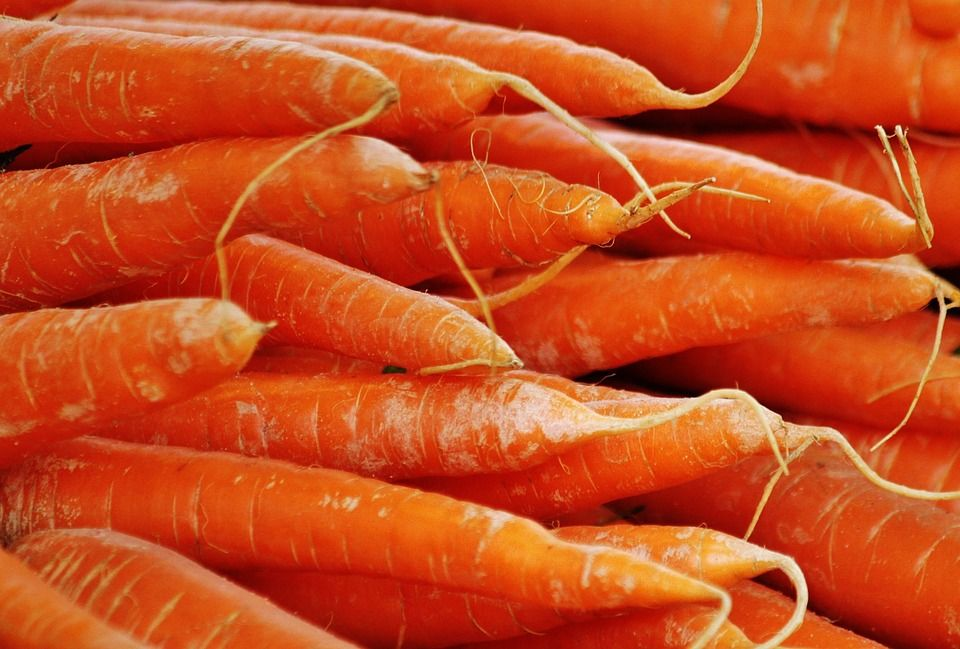 morkų kotletai