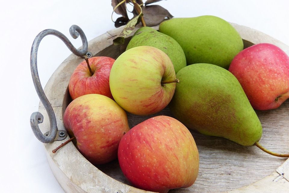 Adomo obuolys (makleuras) - gydomųjų savybių. Receptai tinktūrai, tepalas, augalinis ekstraktas