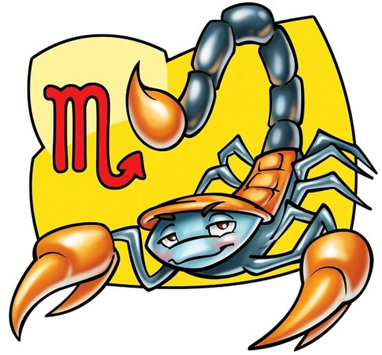 skorpionas, Rugpjūčio