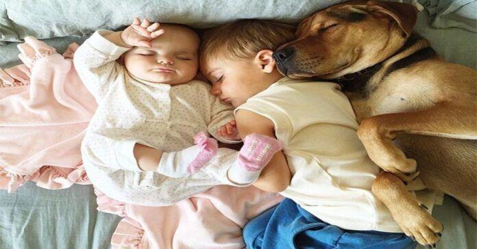 Vaikų ir augintinių draugystė: nepakartojamai šiltos nuotraukos!