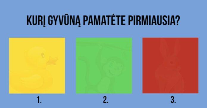 Pasirinkite kvadratėlį ir sužinokite pagrindinius savo asmenybės bruožus!