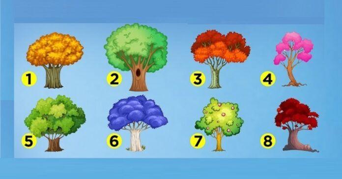 Testas. Pasirinkite medį ir sužinosite, kokia jums bus rudens pabaiga!