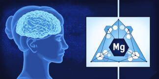 Sužinokite, kodėl magnis labai svarbus jūsų smegenims