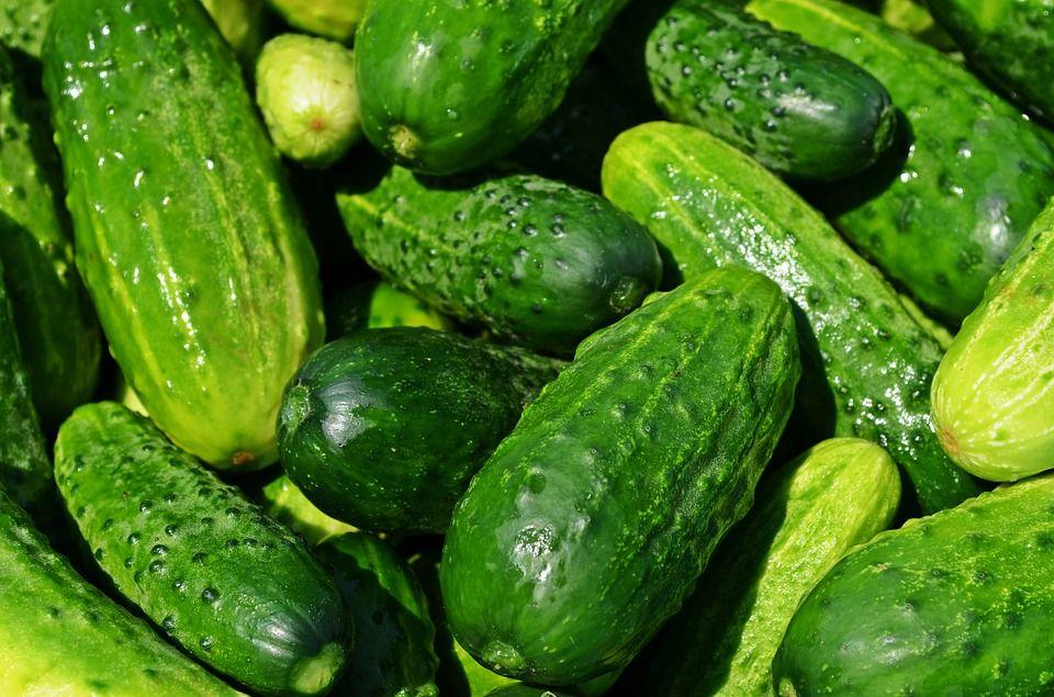 Agurkų dieta, salotų padažai