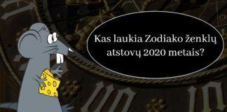 Horoskopas: kas laukia Zodiako ženklų atstovų 2020 metais?