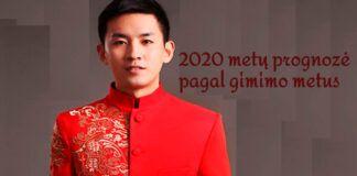 Kinijos astrologo Ling Wu prognozė 2020 metams. Sužinokite!