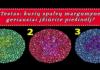 Testas: kurių spalvų margumyne geriausiai įžiūrite piešinėlį?