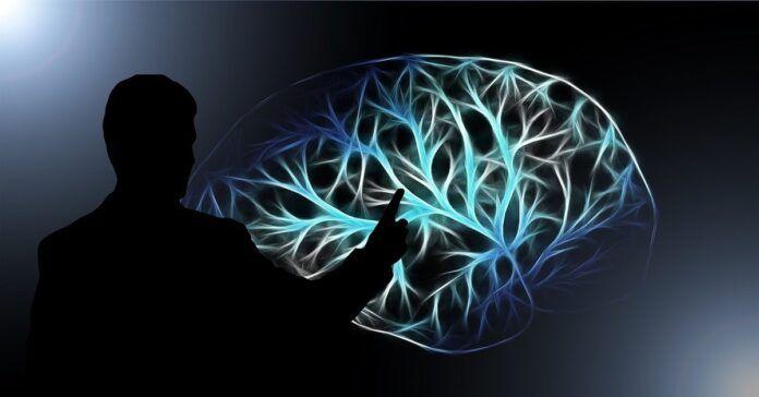 Galite perprogramuoti smegenis ir pakeisti savo gyvenimą