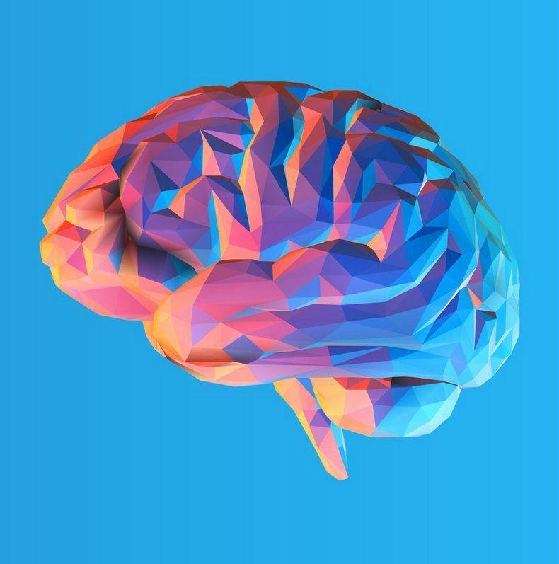 perprogramuoti smegenis