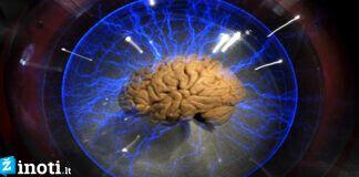 5 dalykai, kuriuos tiesiog myli kiekvieno žmogaus smegenys