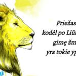 Priežastys, kodėl Liūtas yra vienas geriausių zodiako ženklų