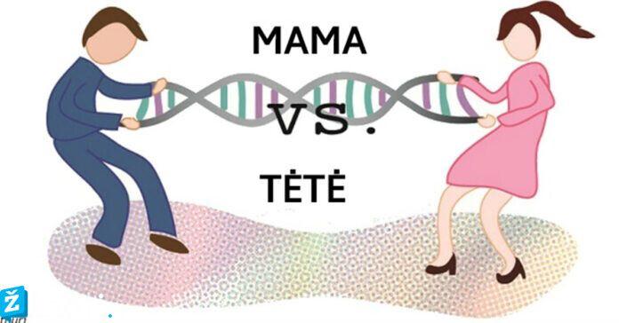 Kokius genetinius bruožus vaikai paveldės iš mamos, o kuriuos - iš tėčio?