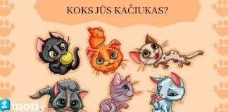 Testas: išsirinkite kačiuką, kuris labiausiai jums patinka. Ką jis atskleidė?