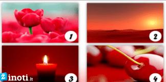 Raudonos spalvos testas: kokia asmenybė esate?