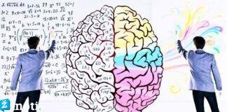 Ką mumyse lemia tai, kuris smegenų pusrutulis yra dominuojantis?