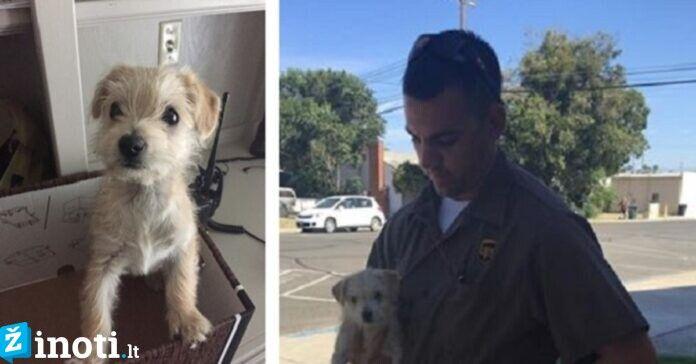 Vairuotojas išgelbėjo kelyje tiesiog jam prieš akis išmestą šuniuką