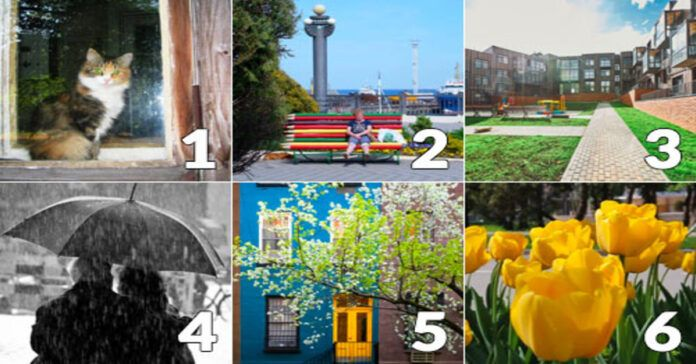 Pasirinkite paveikslėlį ir sužinokite, koks jums bus gegužės mėnuo
