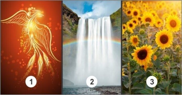 Testas: pasirinkite paveikslėlį ir gaukite dangišką pranešimą