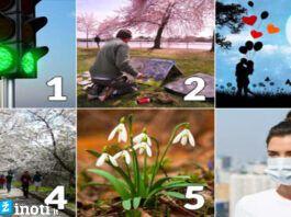 Pasirinkite paveikslėlį ir sužinokite, koks jums bus balandis