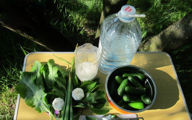 rauginti agurkai