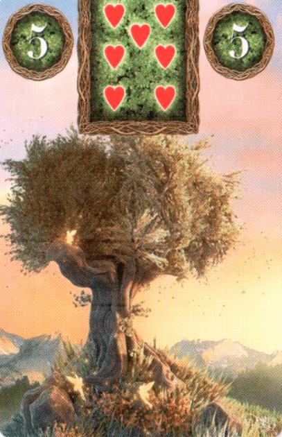 kortą