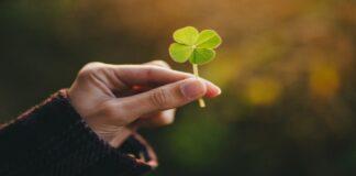Paprasti dalykai, kurie rodo, kad jus greit aplankys sėkmė