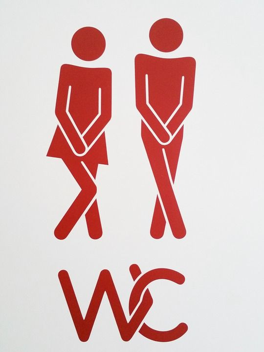 tualetą