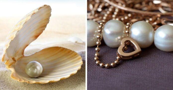 Perlai ir papuošalai su jais. Ką būtina žinoti kiekvienam?