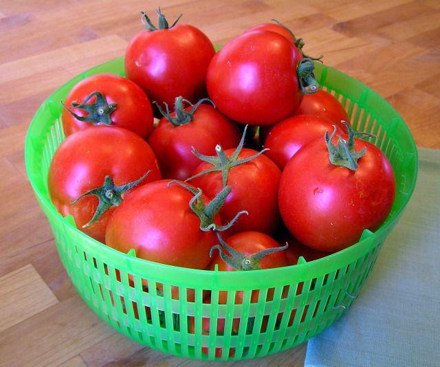 pomidorų