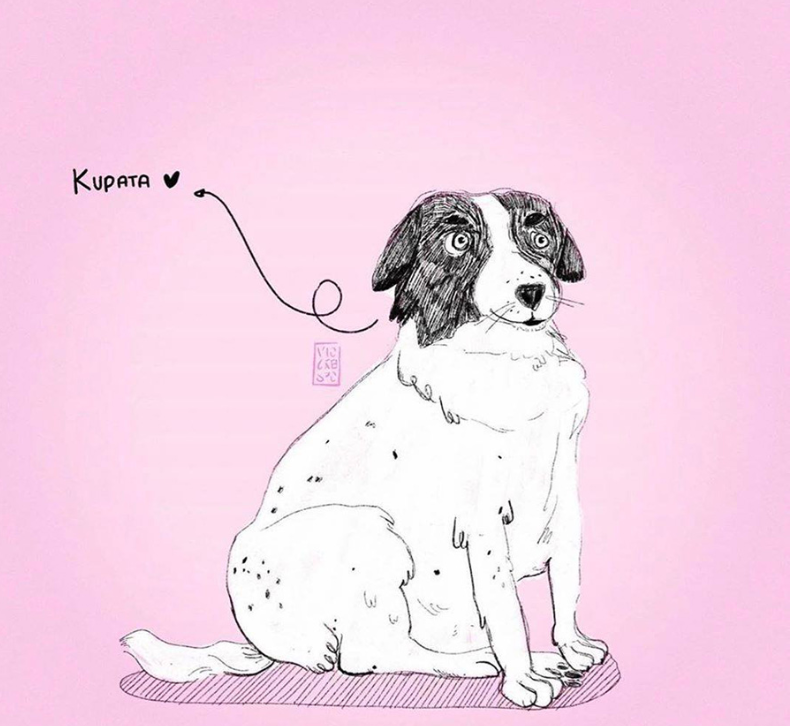 benamis šuo