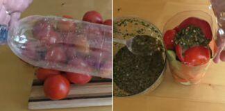 Marinuotos daržovės butelyje. Neįprastas ir labai skanus receptas...