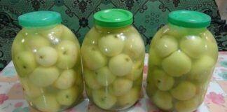 Naminiai konservuoti obuoliai. Nepaprastai skanus patiekalas!