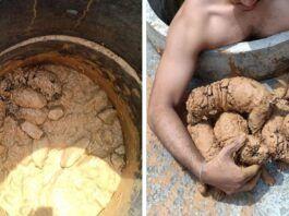 Tailande vyras išgelbėjo šuniukus, išmestus į purvo duobę