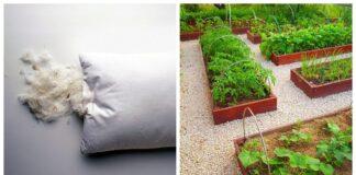 Senos pagalvės yra naudingos! Plunksnas ir pūkus panaudokite sode!