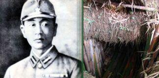 Džiunglių vaiduoklis: istorija apie japoną, kuris 28 metus gyveno po žeme