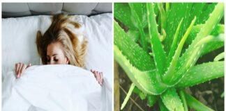 Puikūs augalai miegamajame, kurie ramina kvėpavimo sistemą