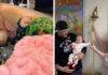 Vaikui pavyko nugalėti vėžį ir paskambinti gyvenimo varpeliu