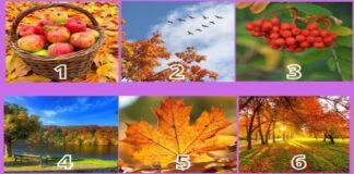 Pasirinkite paveikslėlį ir sužinokite, kuo jus nudžiugins šis rugsėjis