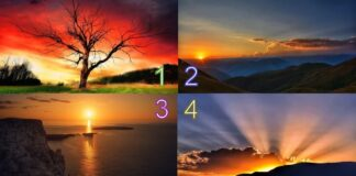 Aušros burtas: pasirinkite saulėtekį ir sužinokite, kokia bus savaitė