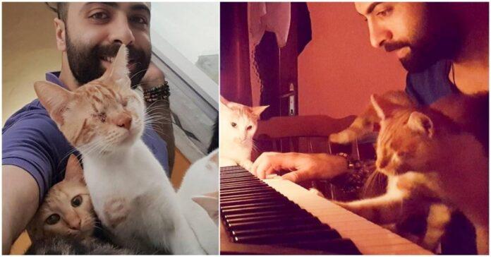 Pianistas išgelbėjo 9 kates. Dabar jos yra ištikimiausios jo klausytojos