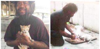 Benamis maitina gatvės kates, nors kartais ir pats neturi ko valgyti