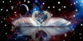Zodiako ženklai, kurie kaip gulbės įsimyli kartą ir amžiams
