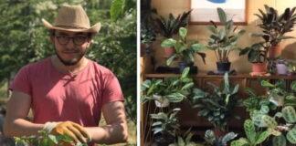 Vyras nusprendė sužinoti, ką augalai veikia per visą dieną. Nustebsite!