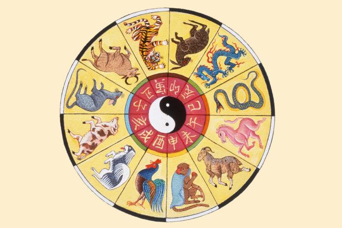 kinų horoskopas
