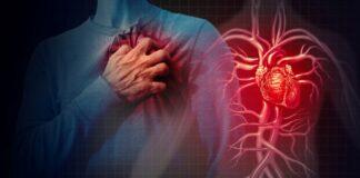 Testas: išsiaiškinkite, kiek iš tiesų metų yra jūsų širdžiai!