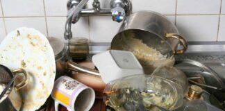 Kodėl neturėtumėte palikti nešvarių indų virtuvėje per naktį?
