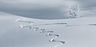 žiema slidinėjimas
