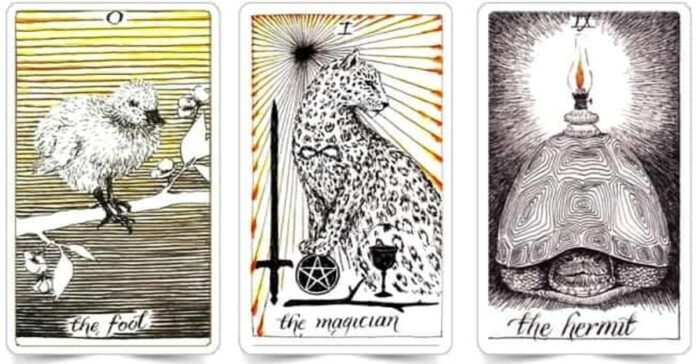 Pasirinkite kortą ir sužinokite, kaip galite įgyti pasitikėjimo savimi